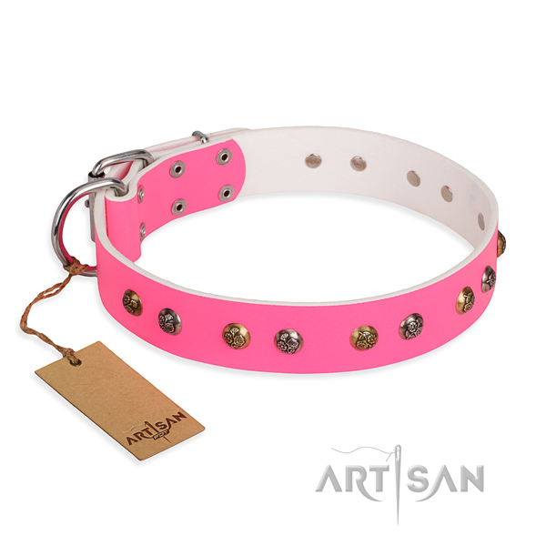 Handy use significant dog collar with corrosion proof traditional buckle