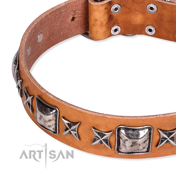 Handy use decorated dog collar of best quality full grain genuine leather