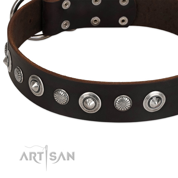Trendy studded dog collar of finest quality full grain leather