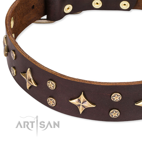Comfy wearing decorated dog collar of fine quality natural leather
