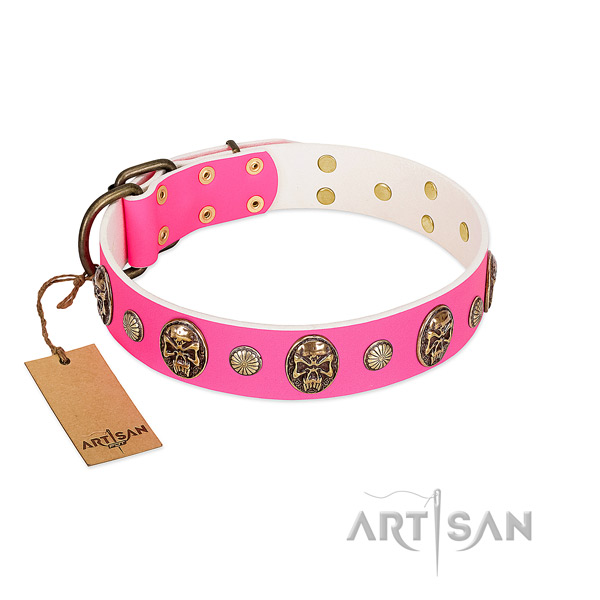 Rust resistant studs on full grain natural leather dog collar for your canine
