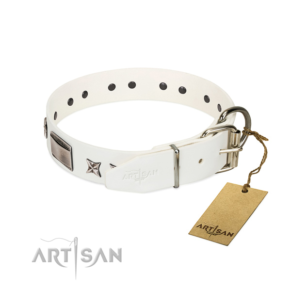 Awesome collar of leather for your lovely doggie