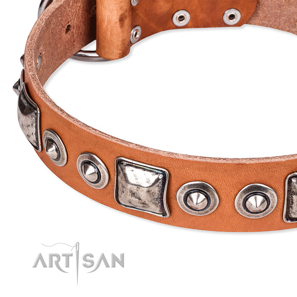 Reliable full grain leather dog collar crafted for your impressive canine