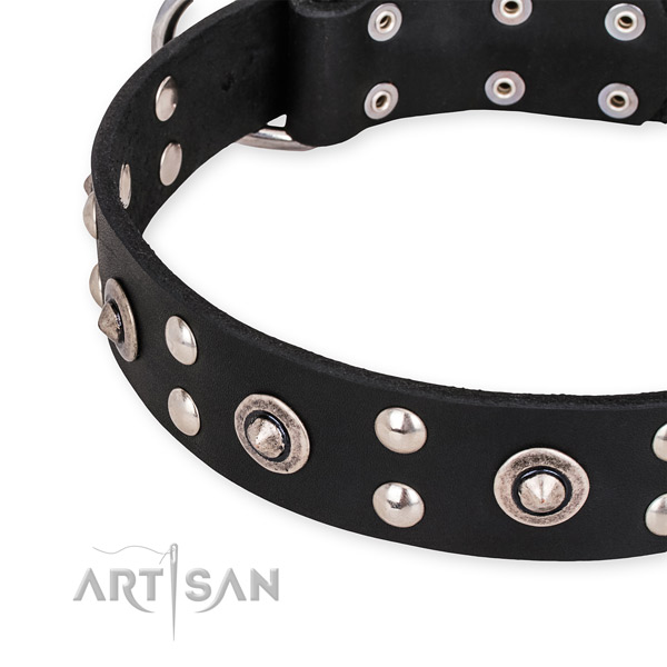 Full grain leather collar with strong hardware for your handsome four-legged friend