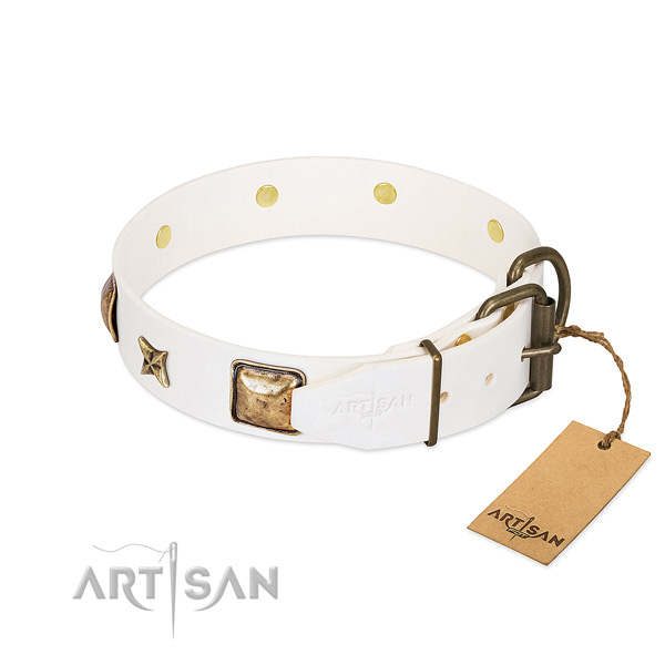 Leather dog collar with corrosion resistant D-ring and decorations