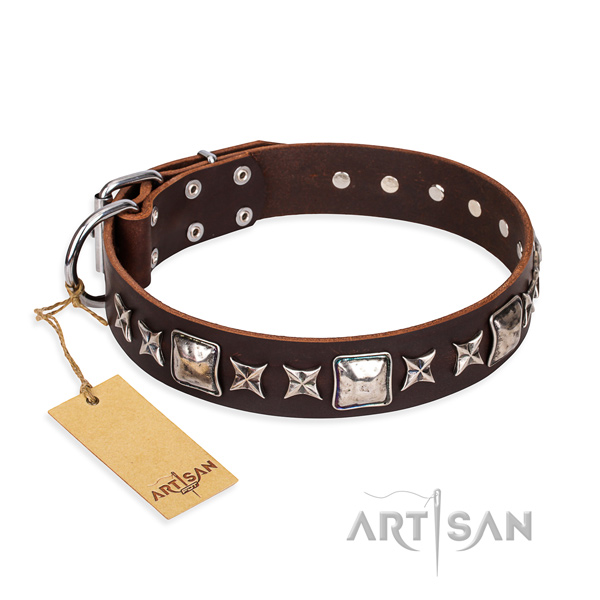 Daily walking dog collar of top quality genuine leather with studs