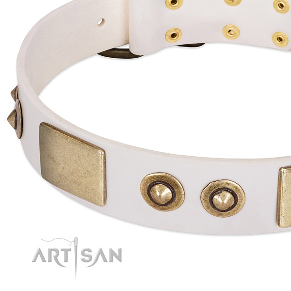 Corrosion proof fittings on full grain genuine leather dog collar for your pet