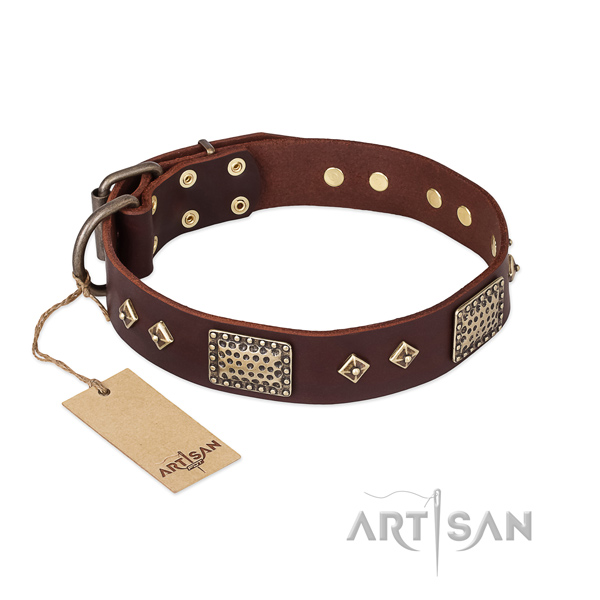 Inimitable leather dog collar for stylish walking