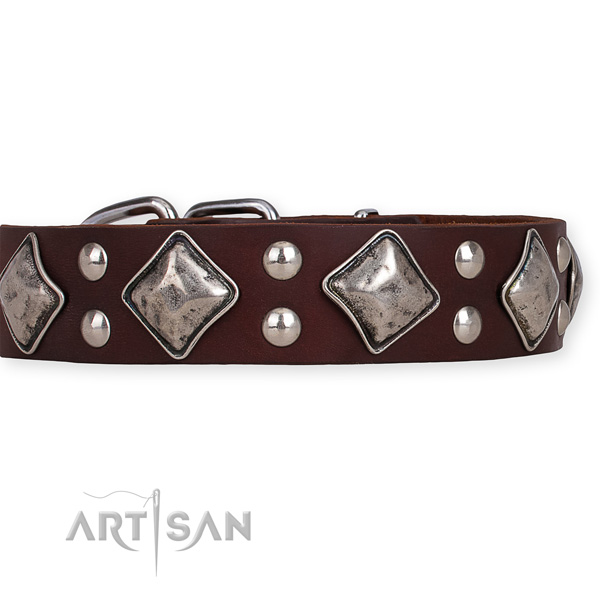 Full grain genuine leather dog collar with extraordinary rust-proof adornments