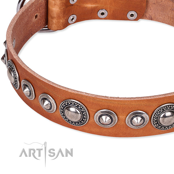 Basic training decorated dog collar of finest quality full grain genuine leather