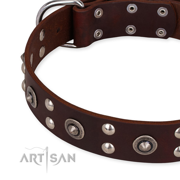 Full grain natural leather collar with strong buckle for your handsome four-legged friend