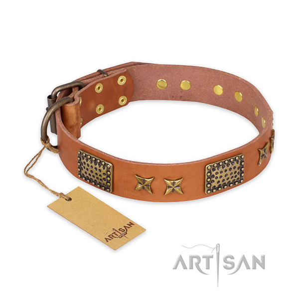 Unusual full grain leather dog collar with corrosion proof fittings