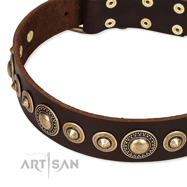 Reliable genuine leather dog collar created for your lovely dog
