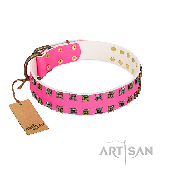 Full grain genuine leather collar with impressive adornments for your canine