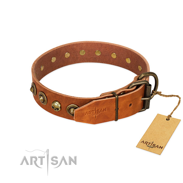 Leather collar with exquisite studs for your doggie