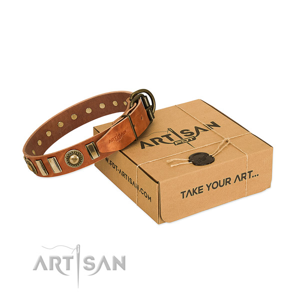 Soft leather dog collar with corrosion resistant fittings