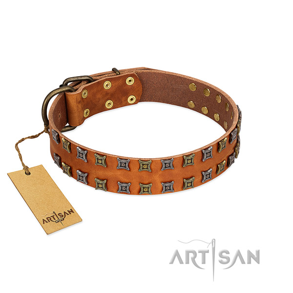 Reliable full grain natural leather dog collar with adornments for your four-legged friend