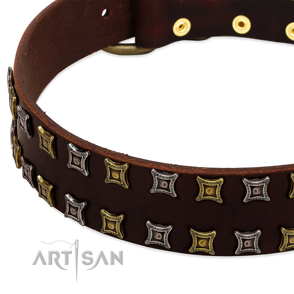 Strong leather dog collar for your impressive dog