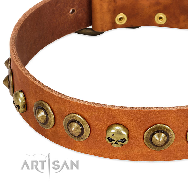 Unique embellishments on full grain leather collar for your pet