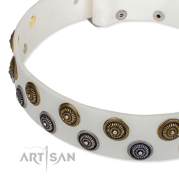 Comfy wearing embellished dog collar of quality leather