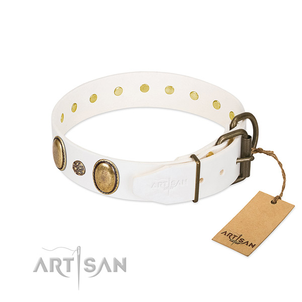 Daily use top notch genuine leather dog collar