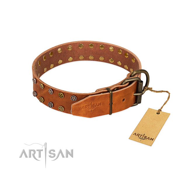Handy use leather dog collar with awesome adornments