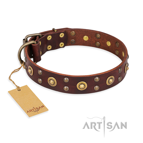 Awesome full grain leather dog collar with corrosion resistant traditional buckle