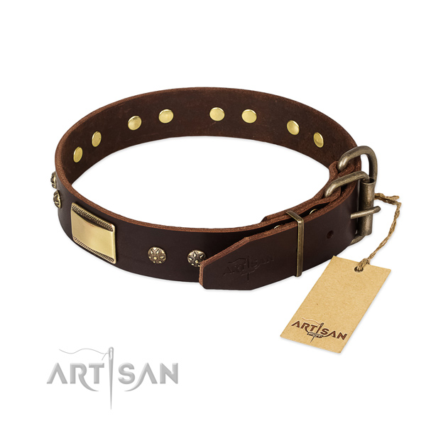 Stunning full grain natural leather collar for your four-legged friend