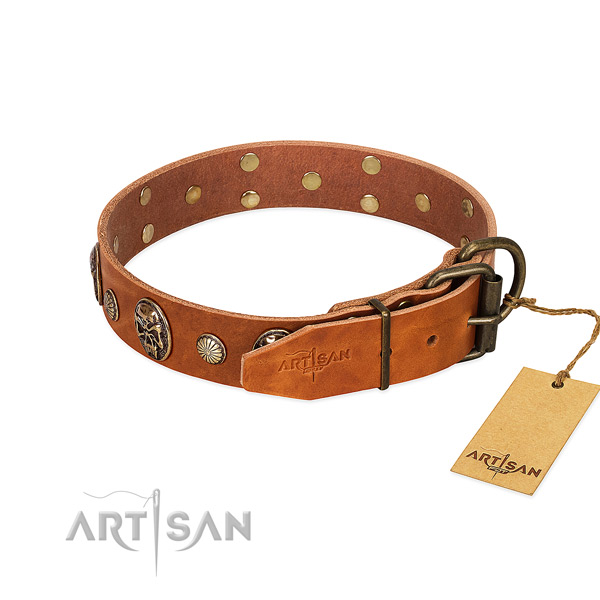 Rust resistant buckle on full grain leather collar for everyday walking your canine