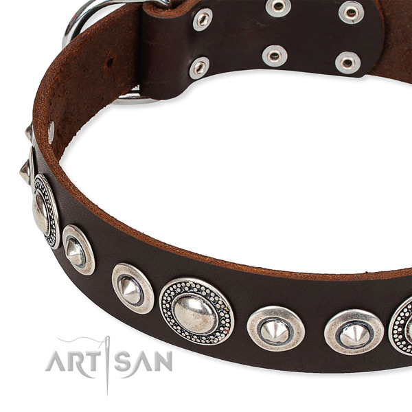 Fancy walking embellished dog collar of best quality full grain natural leather