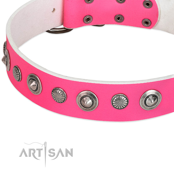 Genuine leather collar with corrosion proof hardware for your beautiful four-legged friend