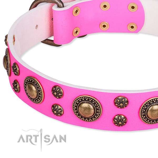 Stylish walking embellished dog collar of durable full grain natural leather
