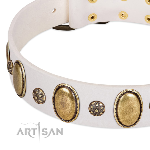 Handy use quality full grain natural leather dog collar with embellishments