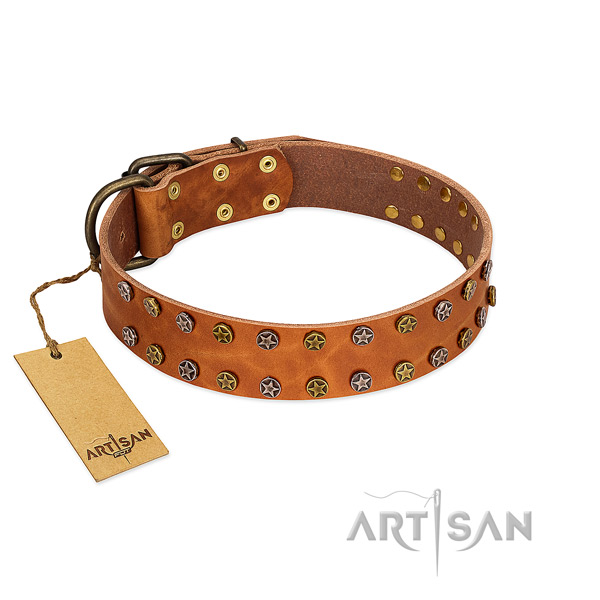 Daily walking quality full grain genuine leather dog collar with decorations