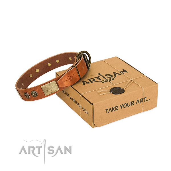 Reliable fittings on full grain leather dog collar for daily use