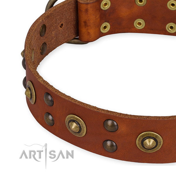 Full grain genuine leather collar with durable traditional buckle for your stylish canine
