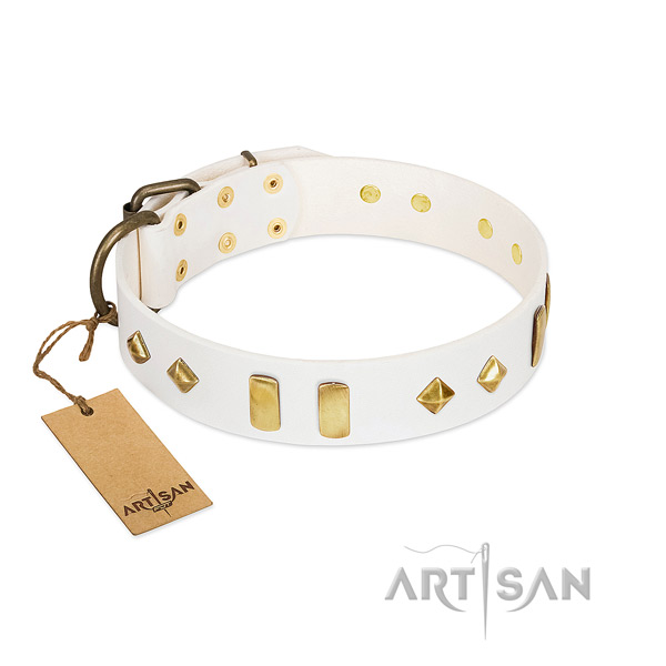 Easy wearing reliable full grain natural leather dog collar with embellishments