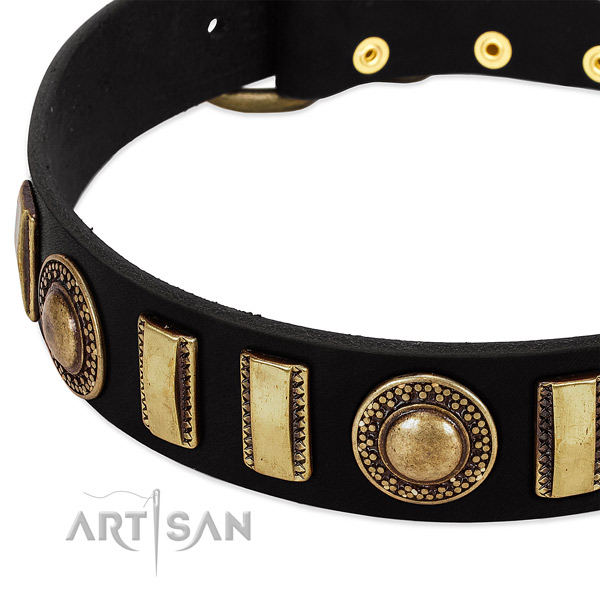 Strong leather dog collar with reliable traditional buckle
