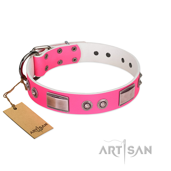 Impressive dog collar of natural leather with adornments
