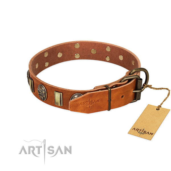 Corrosion proof D-ring on leather collar for stylish walking your pet