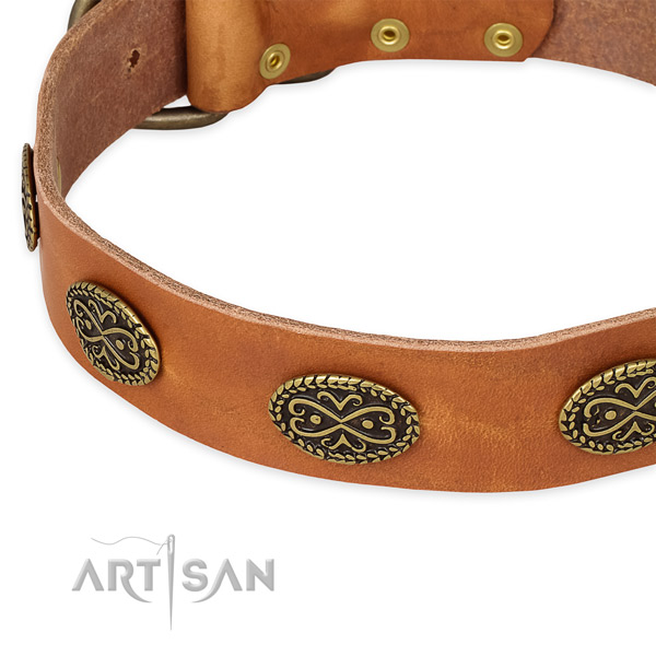 Handcrafted full grain leather collar for your impressive pet