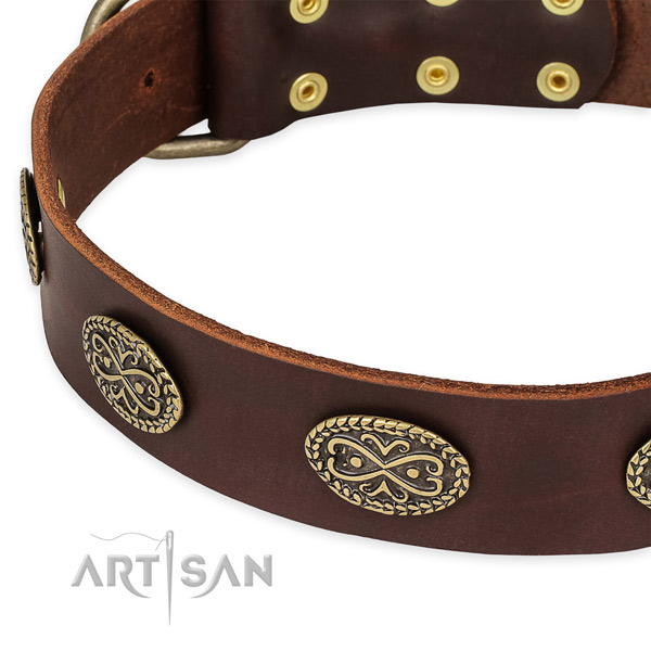 Extraordinary leather collar for your attractive dog