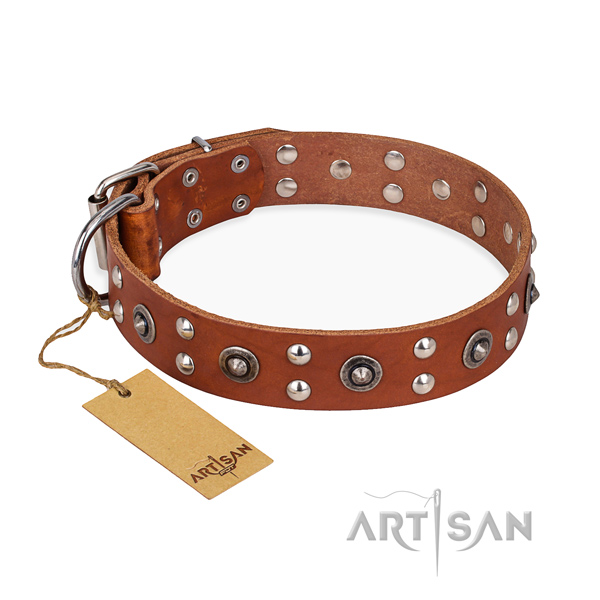 Fancy walking decorated dog collar with reliable buckle
