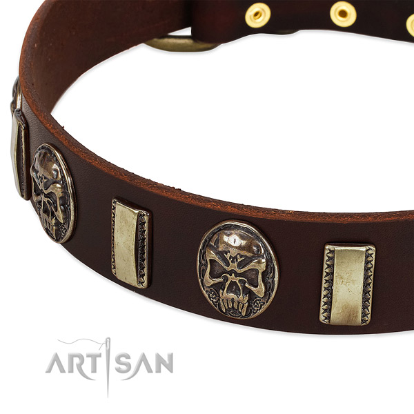 Corrosion proof D-ring on leather dog collar for your four-legged friend