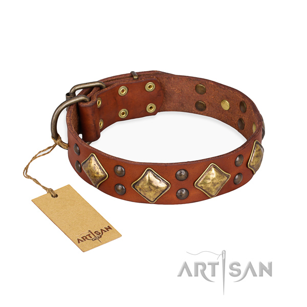 Handy use easy to adjust dog collar with corrosion resistant traditional buckle