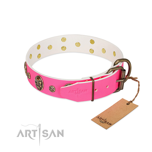 Reliable buckle on full grain leather collar for daily walking your pet