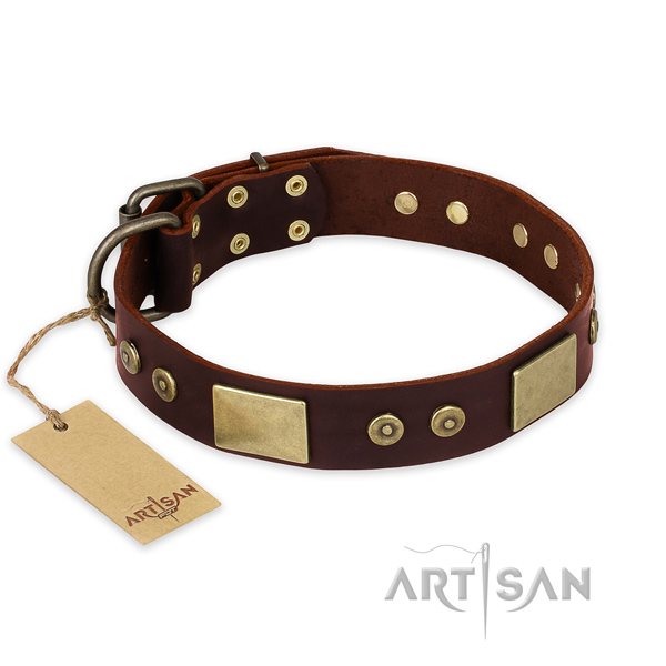 Top notch full grain genuine leather dog collar for daily walking