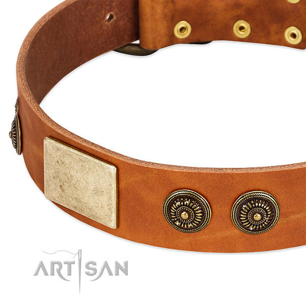 Best quality dog collar handmade for your handsome doggie