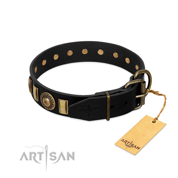 Quality genuine leather dog collar with adornments