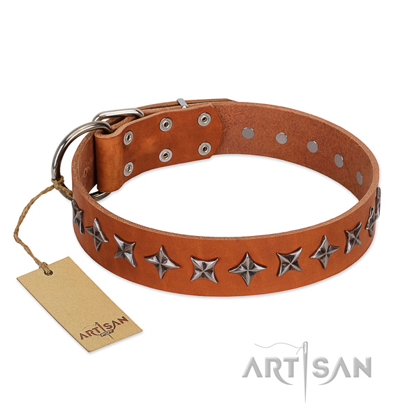 Basic training dog collar of top quality natural leather with embellishments